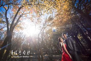 幸福感婚紗攝影作室Happiness wedding