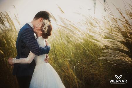 【華納婚紗】必拍幸福芒草婚紗