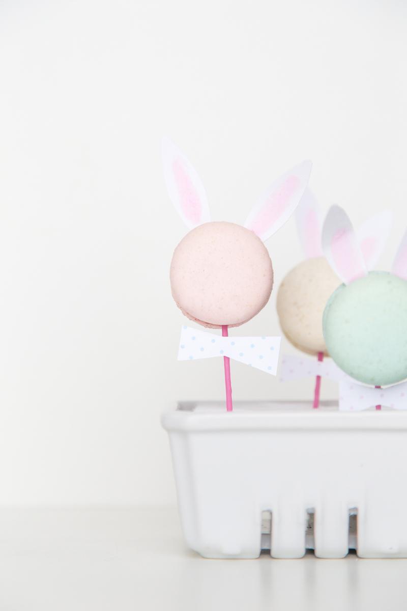 macaron-bunnies-208