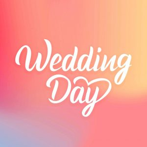 鬼鬼 | WeddingDay小編